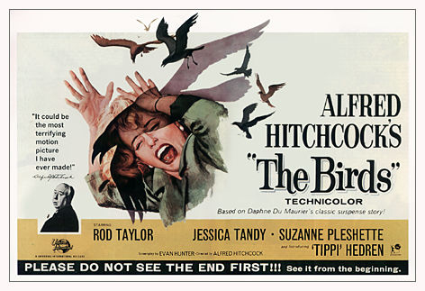 The 1963 movie poster for The Birds.