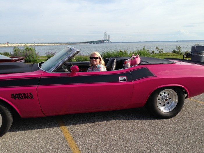 Local Pink Panther  to stalk Autorama