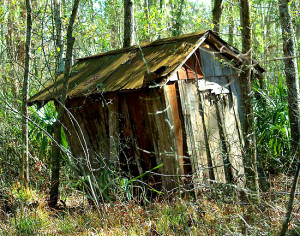 I went on-line to find out what kind of place I can find out in the woods. This came up. #DonsNewDigs