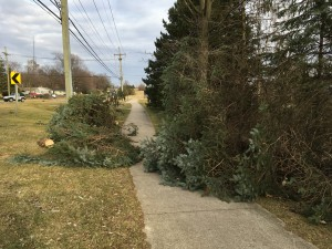 Winds gusting to 68 mph toppled trees and knocked out power to thousands, March 8.