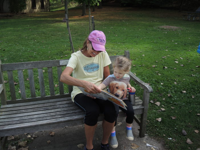 Reading in the park