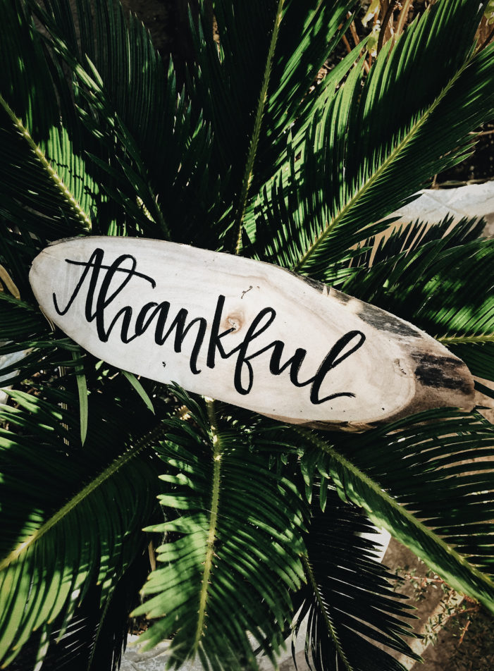 Ideas for this season of gratitude.