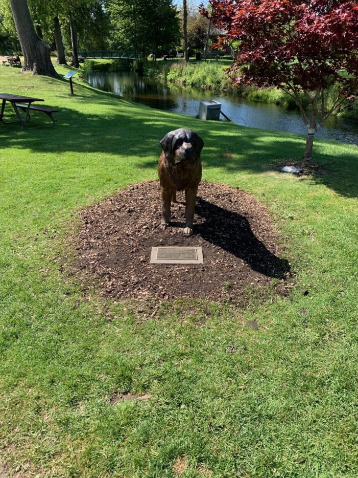 Dog of bronze
