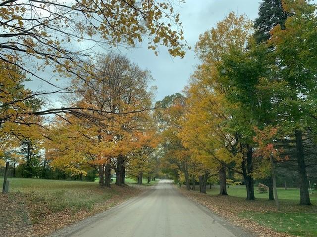 What 'Matt'ers: The fall season